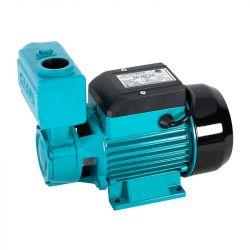WZ 250 pompa hydroforowa do ciepłej wody 230V